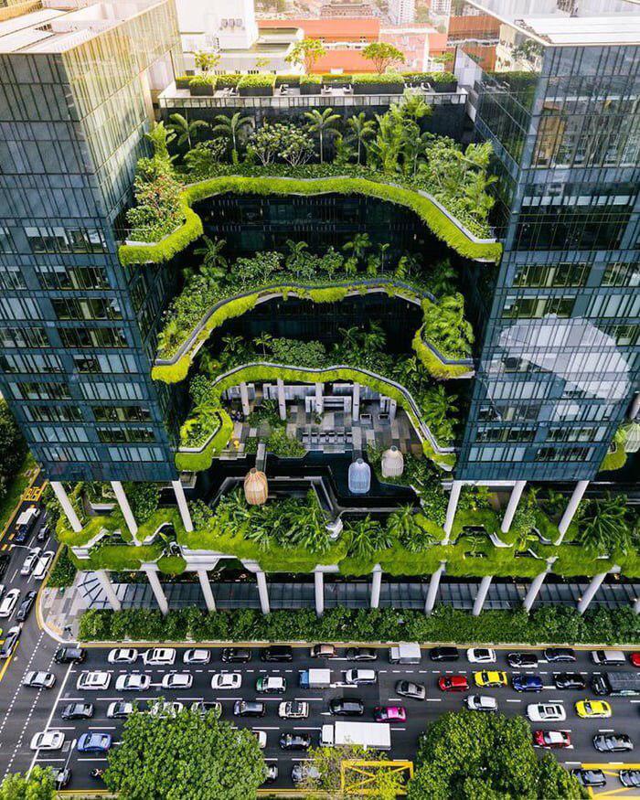 Singapurdagi yashil bino