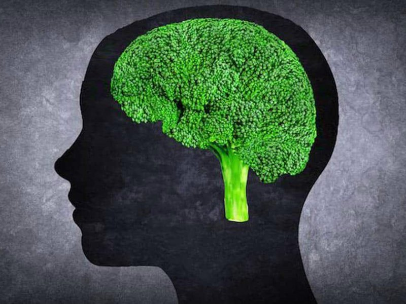 Продукты для мозга, которые обязательно должны быть в рационе