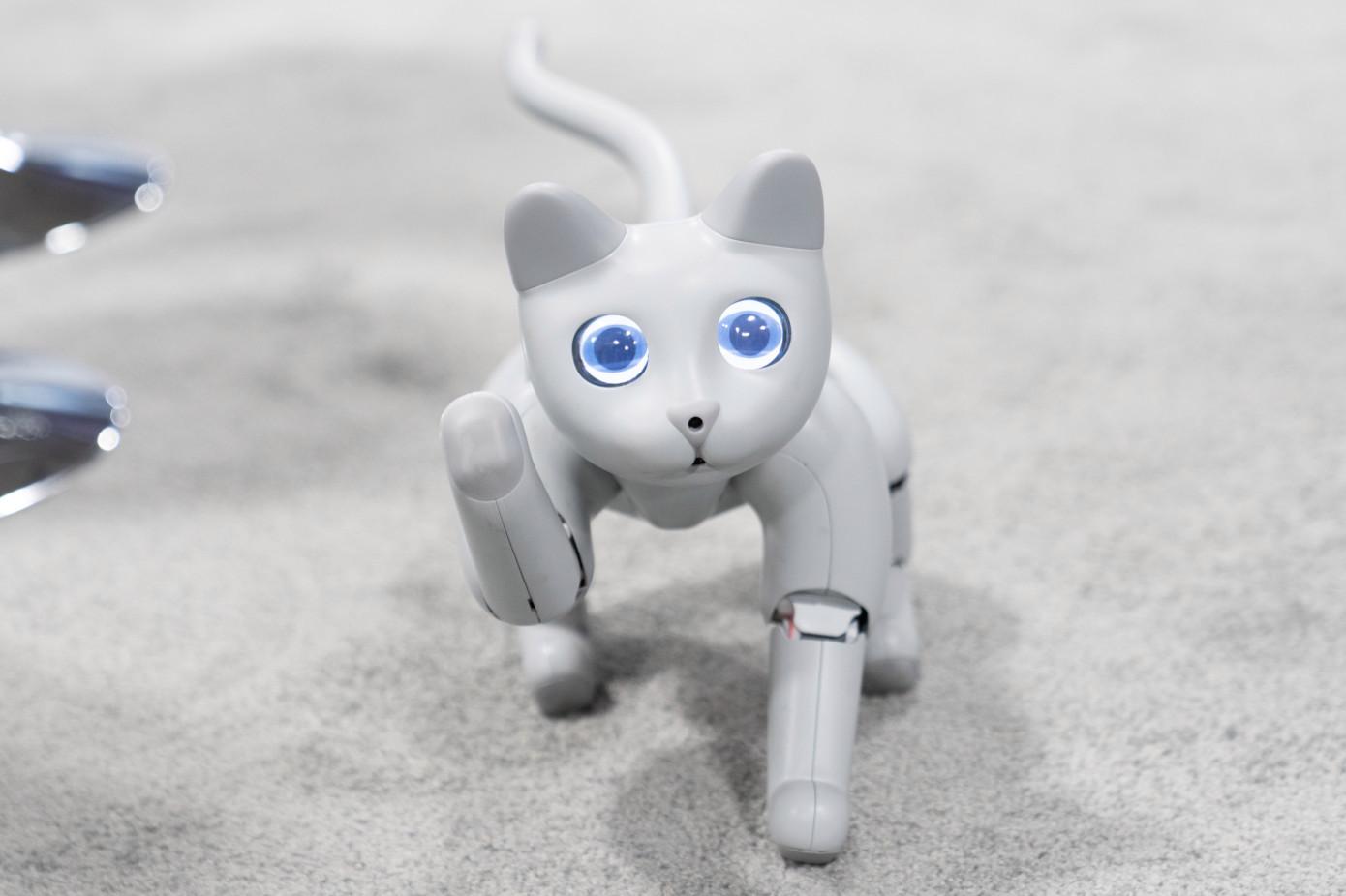 Кота-робота MarsCat показали на выставке в США